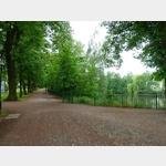 4 - durch den Albert-Park in Freiberg