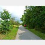 4 - Elberadweg nach Dommitzsch