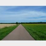 1 - Radweg zwischen Großkühnau und der Elbe