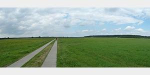 5 - Elberadweg zwischen Steutz und Steckby