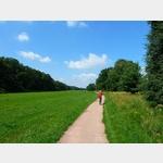 1 - Elberadweg zwischen Dessau und Aken