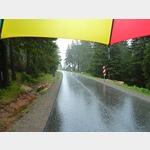 31 - Regenschauer auf dem Rückweg vom Brocken