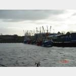Krabbenutter-Flotte
