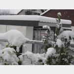 Winterweihnacht  2010 008
